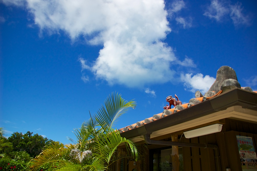 ガーデンあさひで竹富島産の車海老や八重山そばを堪能!