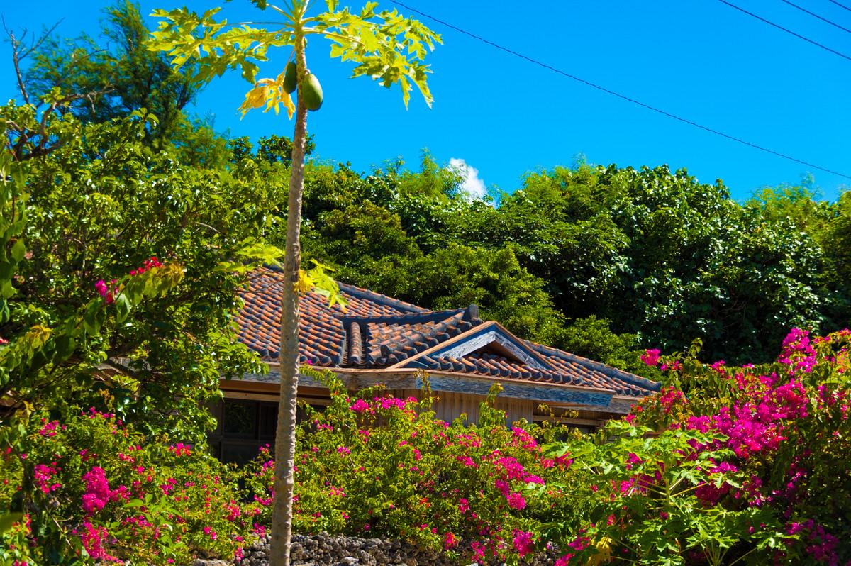 竹富島 ブーゲンビリア 赤瓦屋根