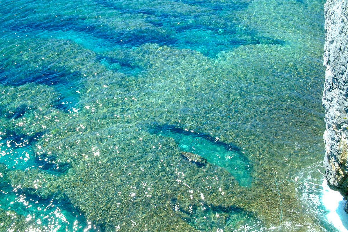 辺戸岬 サンゴ礁