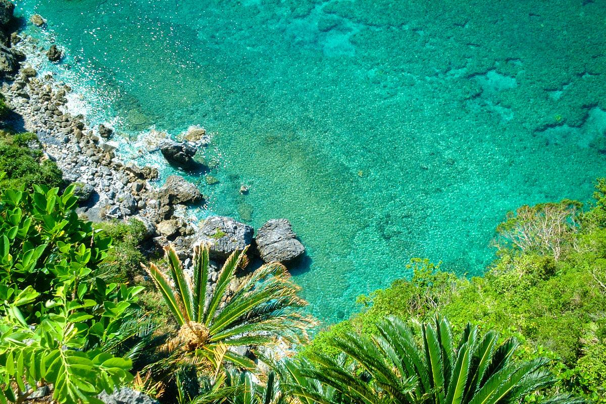 茅打バンタ 断崖から見下ろす、やんばるの絶景スポット